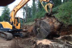 Stump Grinding, Moving tree stump with digger